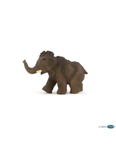 YOUNG MAMMOTH