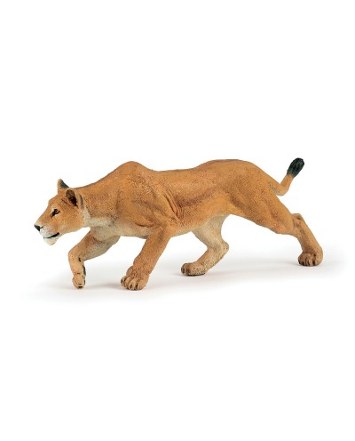 CHASING LIONESS